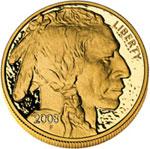 2008 Gold Buffalo