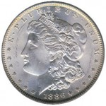 Possibilities for Collecting Morgan Dollars