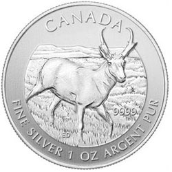 Canadian Antelope Silver Bullion Coin