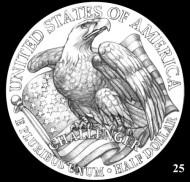 Eagle_25