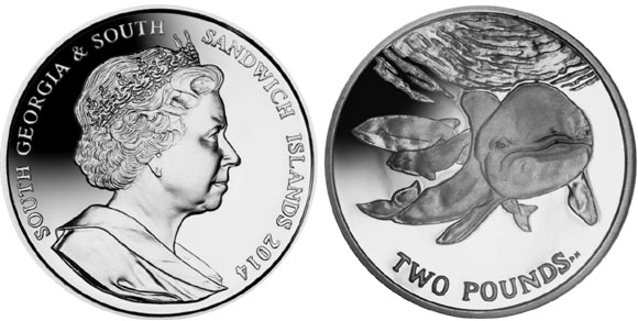 2014 Spectacled Porpoise Coin