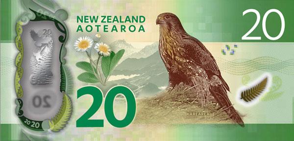 NZ-2015-20-b