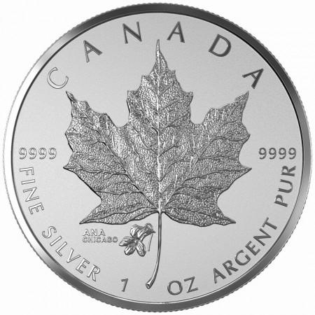 Canada 2015 ANA chicago $5 b