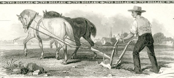 Ch-06-3753_horses_plowing