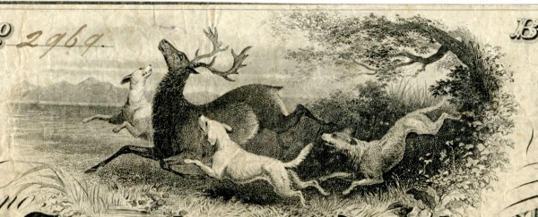 Ch-06-3960_dogs_and_deer