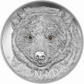 canada 2016 $250 spirit bear bTINY