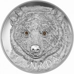 Canada Issues Kilogram Gold and Silver coins featuring Image of Rare Spirit Bear