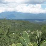 A Numismatic Tour of Mexico: Tamaulipas