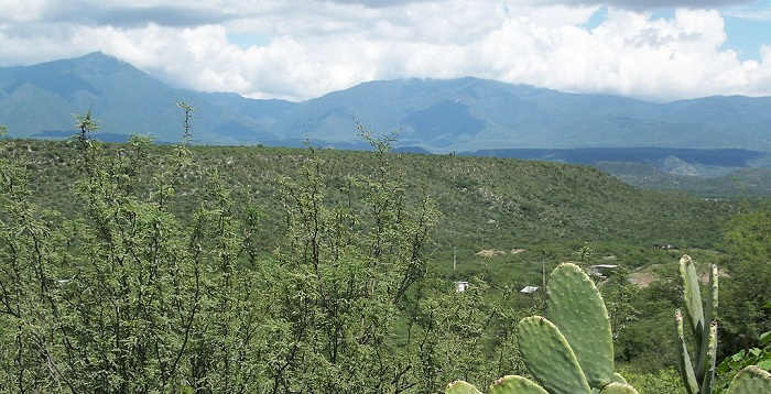 1024px-Sierra_Madre_Oriental_-_La_Independencia_Jaumave,_Tam. CC XHUANXSMALL