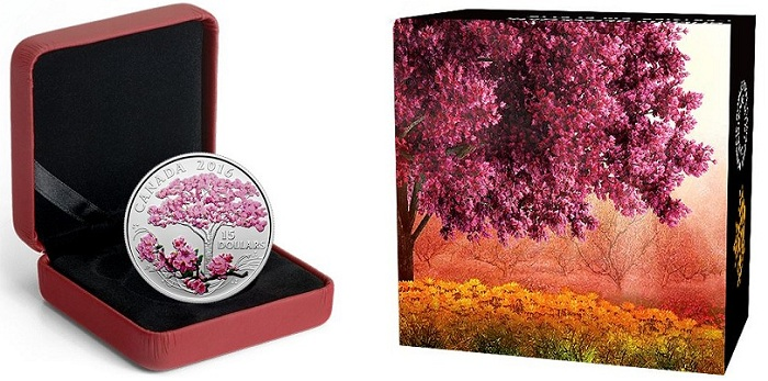 blossom caseBOTH