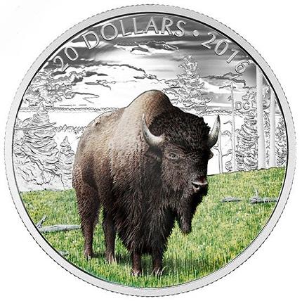 buffaloSMALL