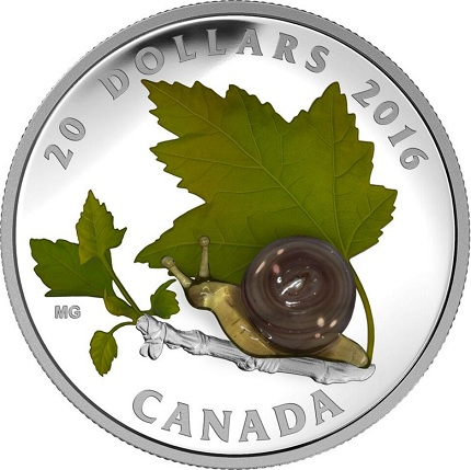 canada 2016 snail bSMALL