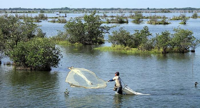 800px-Shrimp_fisherman CC Tomas CastelazoSMALL