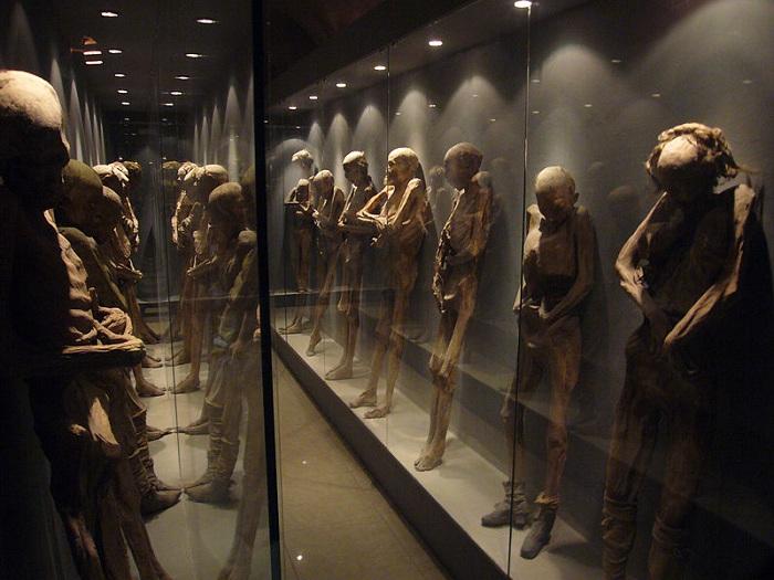 Mexican_Mummies CC cedarblueSMALL