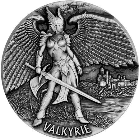 master-valkyrie_reverse