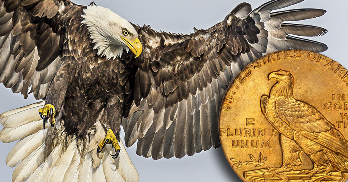 June 20 is National Bald Eagle Day | Coin Update