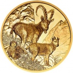 Austria: Majestic Alpine ibex graces the latest gold coin in Wildlife in Our Sights series