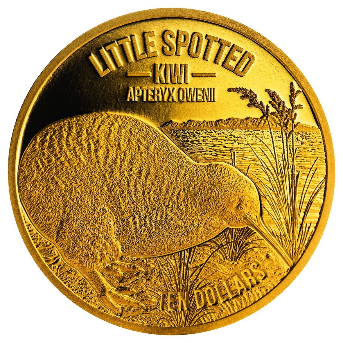 New Zealand Latest Kiwi Gold And Silver Coins Feature