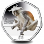 """Gibraltar: Third """"Great Apes"""" coin released in popular series"""