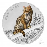 Nicaragua: Solitary and distinctive ocelot features on latest silver coin in Wildlife series