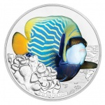 Niue: Fearless and inquisitive emperor angelfish features on the second release in the exciting Reef Fish coin series